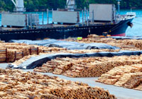 log stacks waiting to be loaded at the ship dock